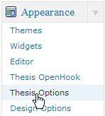 Select Thesis Options.
